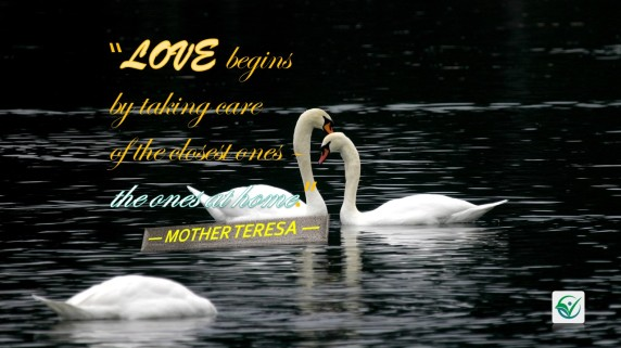 LOVE begins_Mother Theresa Quote001