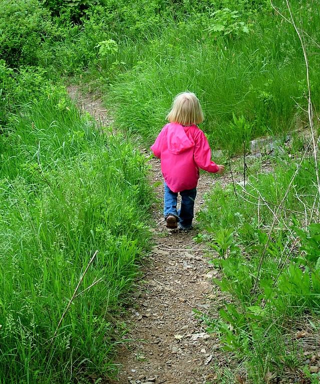 follow-the-path-1310738-639x764_Freeimages.com