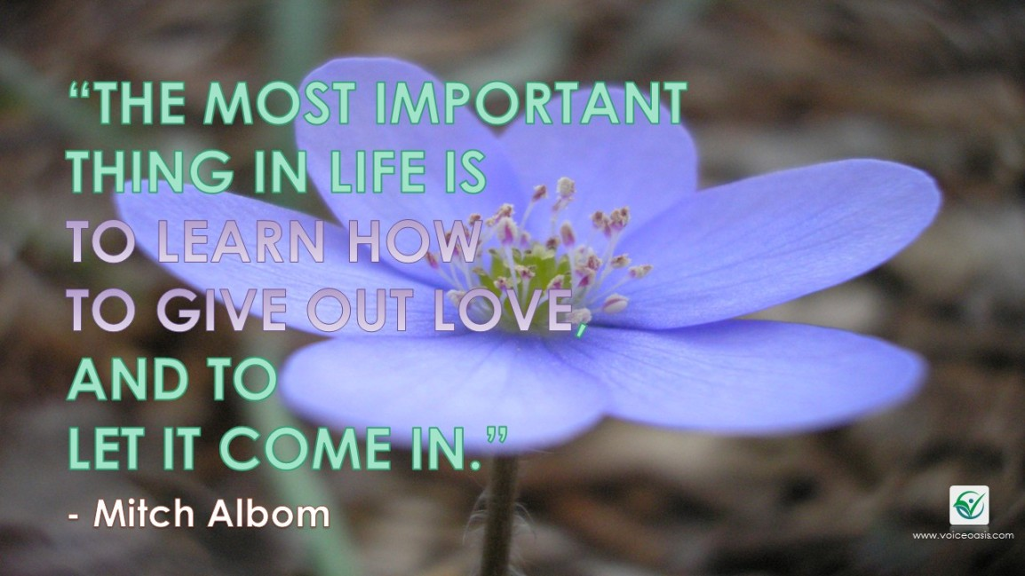 #Quotes: The Power of Love Can OvercomeEverything